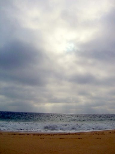 ocean03